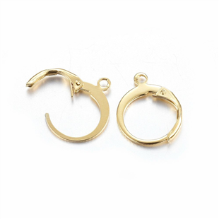 Goud stainless steel leverback oorring met ring